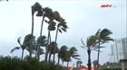 Bão Irma khiến 200 người trên đảo St. Martin có thể mất tích