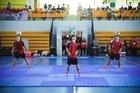 Giải bóng đá nghệ thuật Việt Nam lần thứ 5