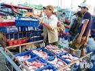 Ngư dân thờ ơ với chứng nhận nguồn gốc hải sản