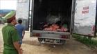 Bắt xe chở sản phẩm động vật không rõ nguồn gốc