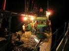 Cứu nạn thành công tàu cá trên vùng biển Hải Phòng