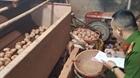 Thủ đoạn nhuộm đất Đà Lạt cho khoai tây Trung Quốc