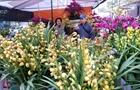Sôi động chợ hoa, sinh vật cảnh ở Vạn Phúc