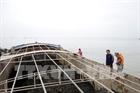 Cảnh sát biển 1 tạm giữ tàu chở 800 tấn than không giấy tờ