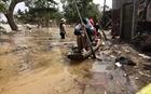 Làm sạch môi trường sau lũ lụt