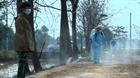 Tăng cường công tác phòng chống dịch cúm A/H5N6