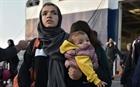 Số đơn xin tị nạn tại EU giảm thấp nhất trong 8 năm