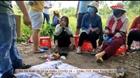 Nhóm phụ nữ mở sới bạc sát phạt trong vùng dịch