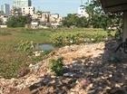 Hồ Hà Nội đang bị ô nhiễm, xẻ thịt nghiêm trọng