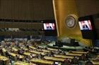 Nâng cao vai trò của Liên hợp quốc trong thời kỳ mới