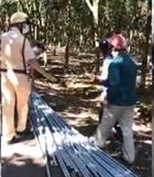 Giám đốc nông trường vi phạm còn chống hiệu lệnh của CSGT