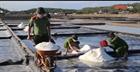 Chiến sĩ Công an giúp diêm dân làm muối