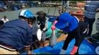 Ngư dân trúng mẻ cá thu bè kỷ lục