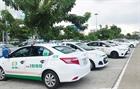 Xác minh vụ đình công của tài xế taxi tại sân bay Đà Nẵng