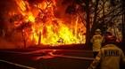 Người dân Australia phản đối cách ứng phó cháy rừng