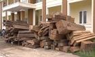 Công an Quảng Bình thu giữ hàng chục mét khối gỗ quý hiếm