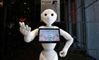Nhật Bản đưa bệnh nhân Covid-19 vào khách sạn robot điều trị