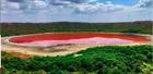 Ấn Độ: Hồ nước 50.000 tuổi từ thiên thạch bất ngờ đổi màu hồng