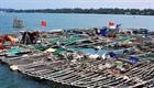 Quảng Ngãi: Phát triển bền vừng nhờ nuôi tôm hùm, cá bớp