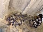 Hũ tro cốt bị gỡ di ảnh, chất xó ở chùa Kỳ Quang 2