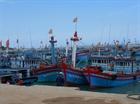Ngư dân Lý Sơn không thể ra khơi do biển động kéo dài