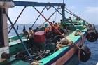 Nổ súng truy bắt tàu cá chở 3.000 lít dầu không rõ nguồn gốc