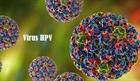 Virus HPV - Những điều cần lưu ý