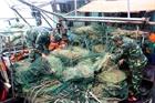 Báo động tình trạng khai thác tận diệt thủy hải sản