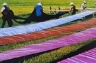 Khám phá làng nghề dệt lụa Vạn Phúc