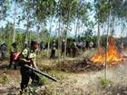 Lực lượng CAND chủ động phòng cháy, chữa cháy rừng