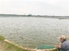 Hà Tĩnh: Lũ cuốn trôi gần 170 tỷ đồng của các hộ nuôi trồng thủy sản