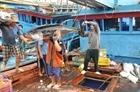 Tạo đột phá trong chống khai thác hải sản bất hợp pháp