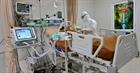 Hơn 955.000 người tử vong do COVID-19 trên thế giới