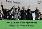 Hội nghị COP-22 biến Thỏa thuận Paris thành hành động