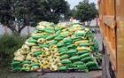 Phát hiện phân bón được sản xuất bằng đất, cát