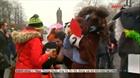 Anh: Độc đáo cuộc đua ngựa Pantomime