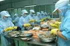 Đà Nẵng: Hơn 13 tỷ đồng cung ứng thủy sản an toàn
