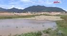 Nhà máy xả thải gây ô nhiễm và thiệt hại cho dân ở xã Krông Á