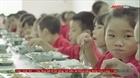 Lo ngại chất lượng suất ăn của học sinh bán trú