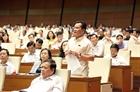 Phiên tòa xét xử bác sĩ Hoàng Công Lương làm nóng nghị trường Quốc hội