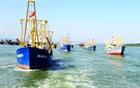 Bình Định: Những con tàu 67 vẫn phải nằm bờ