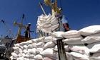 Xuất khẩu gạo gặp khó khăn
