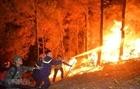 Công điện của Bộ Công an về phòng, chống và ứng phó với cháy rừng