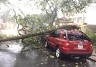 Mưa bão gây thiệt hại tại một số địa phương