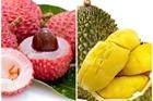 Chuyên gia làm rõ lo ngại ăn hoa quả có nồng độ cồn
