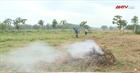 Nơi người nông dân nói không với thuốc diệt cỏ