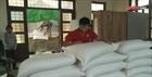 Xuất cấp 3.500 tấn gạo hỗ trợ người dân vùng lũ Quảng Bình, Quảng Ngãi