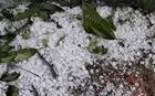 Mưa đá, dông lốc gây thiệt hại tại 5 tỉnh