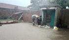 Trung Quốc phát báo động đỏ về bão Bavi