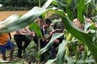 Chiến sỹ Công an băng mình cứu người trong nước lũ